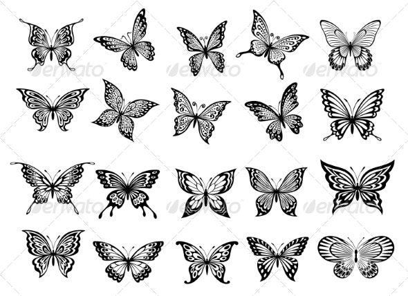 Set of Twenty Butterflies - Miscellaneous Vectors