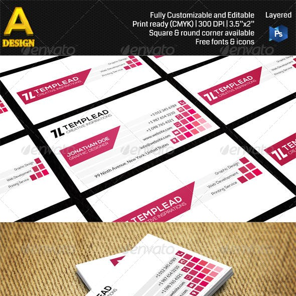 Checkered Corporate Business Card AN0456