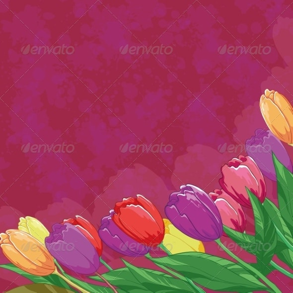 Tulips on Abstract Background - Flowers & Plants Nature