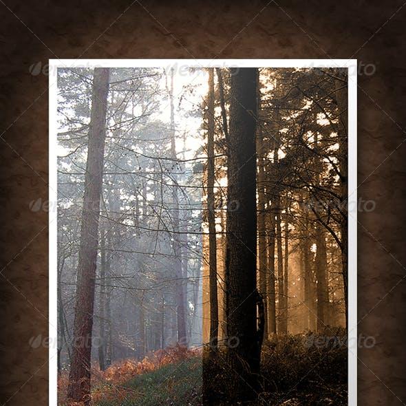 Older Photo Filters
