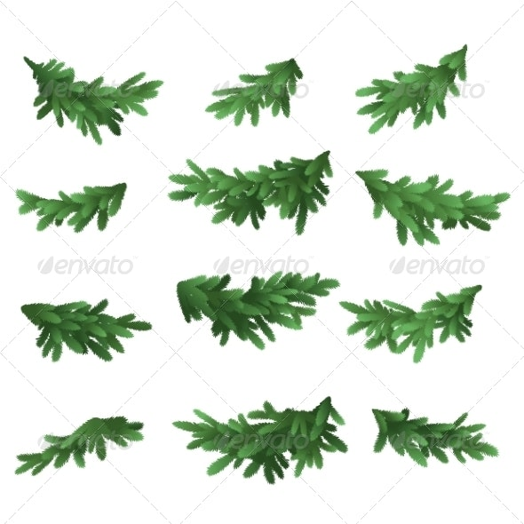 Christmas Tree Green Branches Set - Flowers & Plants Nature