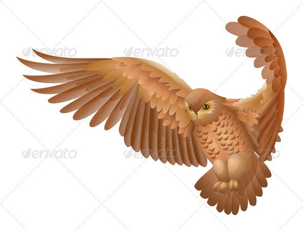 Flying Owl Isolated  - Animals Characters
