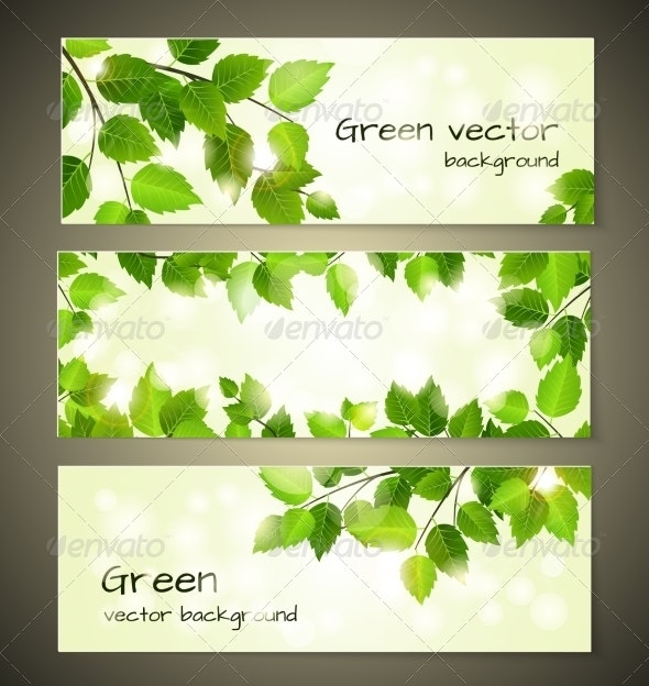 Green Leaves Banners - Miscellaneous Vectors