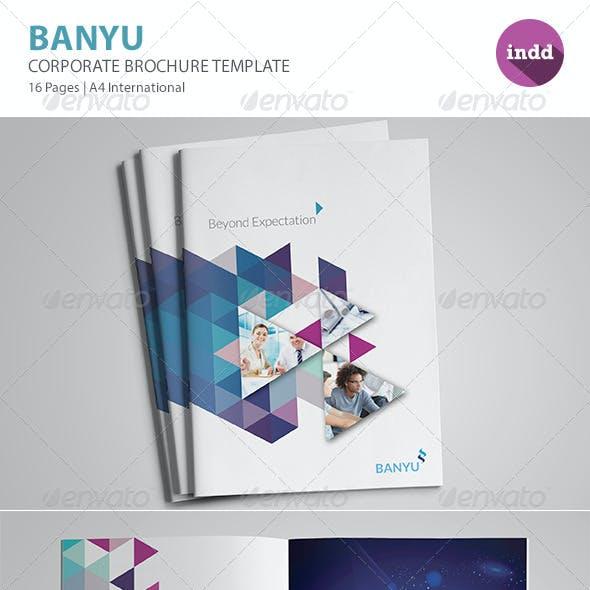 BANYU - Professional Corporate Brochure Templates