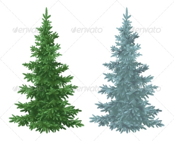 Christmas Green and Blue Spruce Fir Trees - Flowers & Plants Nature