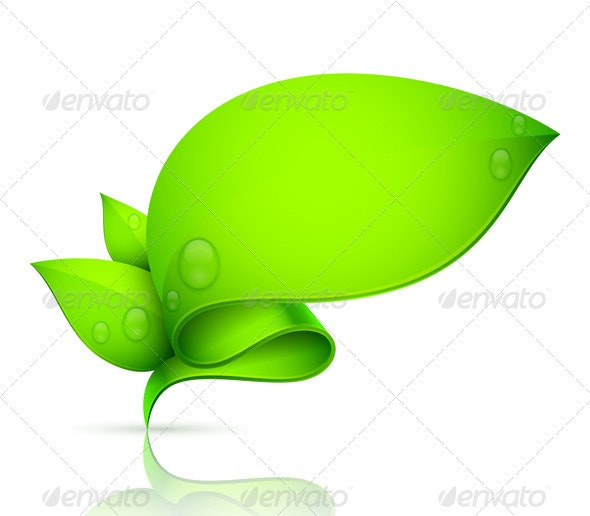 Leaf Banner - Flowers & Plants Nature