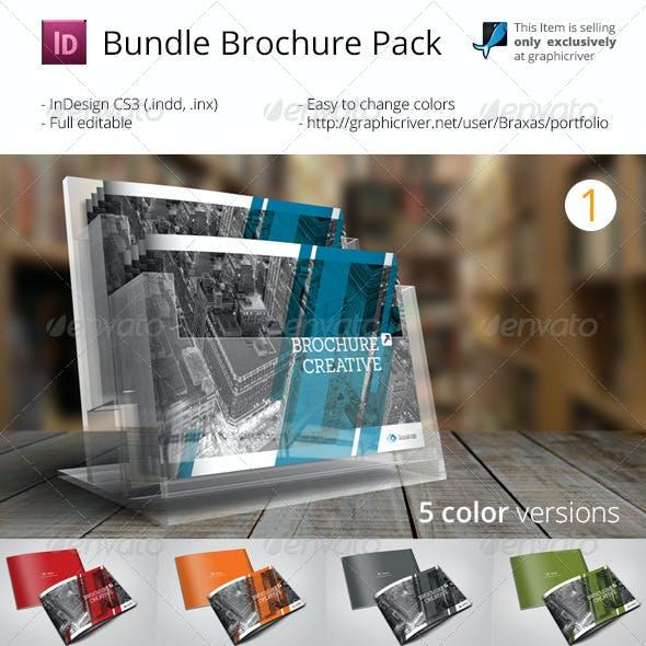 Bundle Brochure InDesign Pack