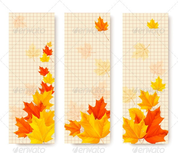 Three Autumn Banners with Color Leaves - Flowers & Plants Nature