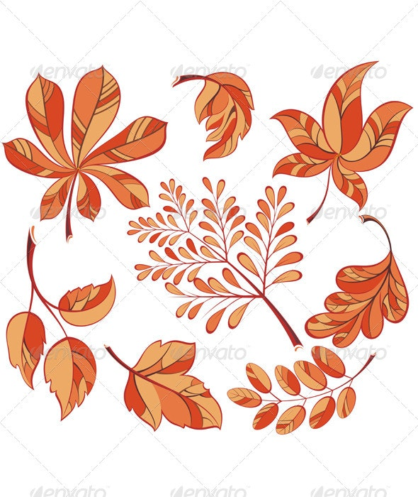 Collection Beautiful Colourful Autumn Leaves - Flowers & Plants Nature