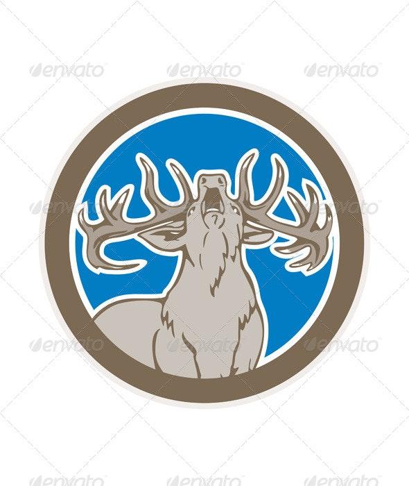Stag Deer Roaring - Animals Characters