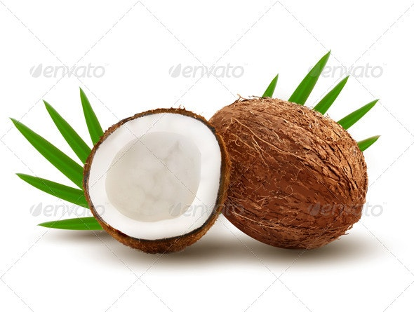 Coconut with Palm Leaves - Food Objects