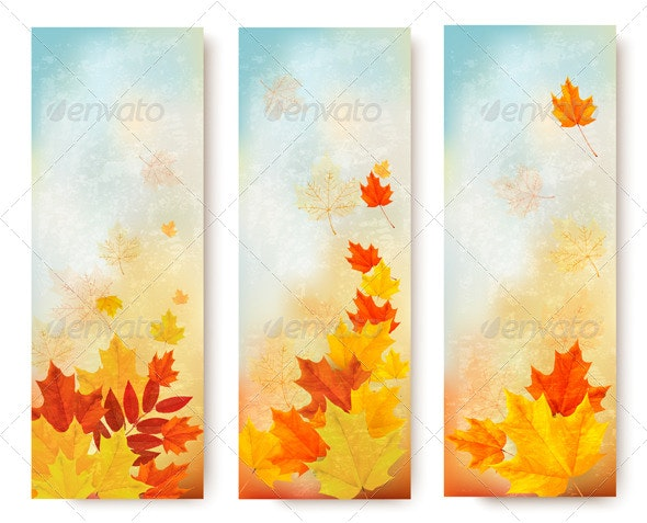 Three Abstract Autumn Banners with Color Leaves - Nature Conceptual