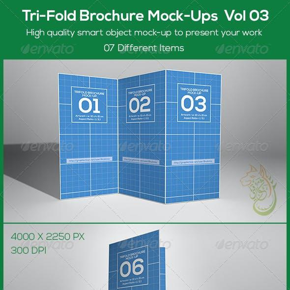 Tri-Fold Brochure Mock-Ups  Vol 03