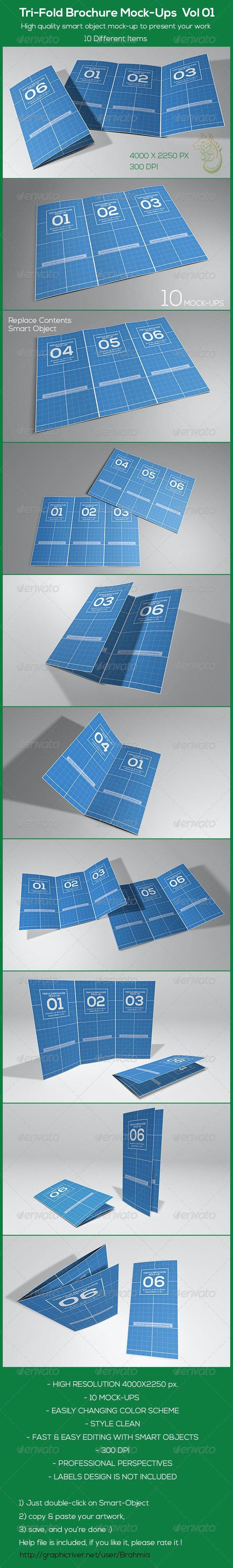 Tri-Fold Brochure Mock-Ups Vol 01 - Brochures Print