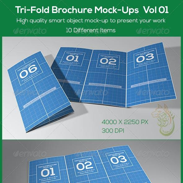 Tri-Fold Brochure Mock-Ups Vol 01