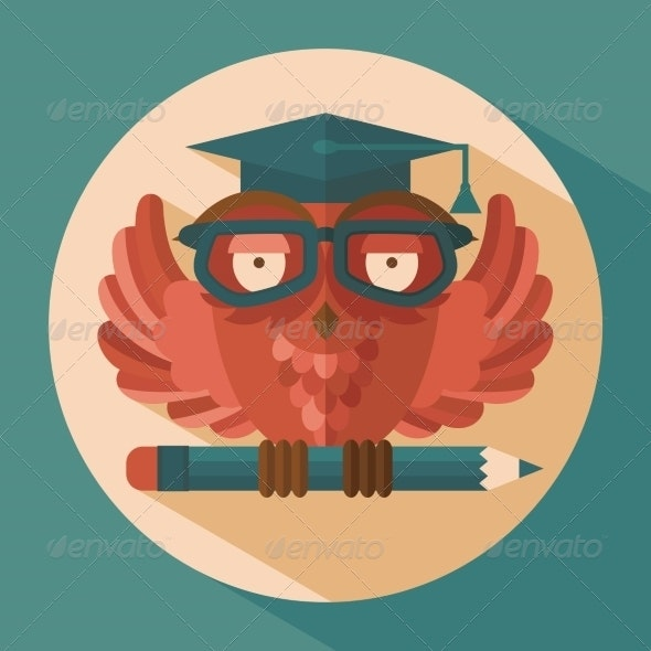 Owl in Graduation Cap - Animals Characters