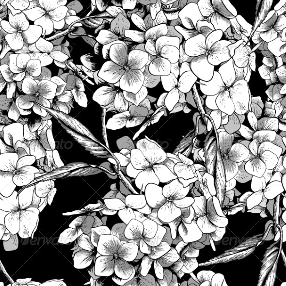 Monochrome Seamless Background with Hydrangea  - Patterns Decorative