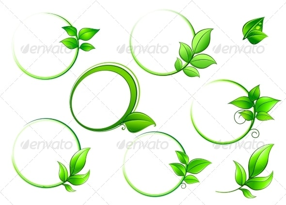 Frames Set with Green Leaves - Flowers & Plants Nature