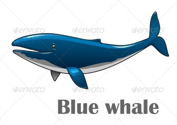 Cartoon Blue Whale - Animals Characters