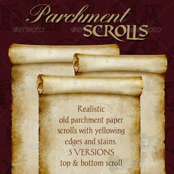 Parchment Scroll. Old Manuscript Paper