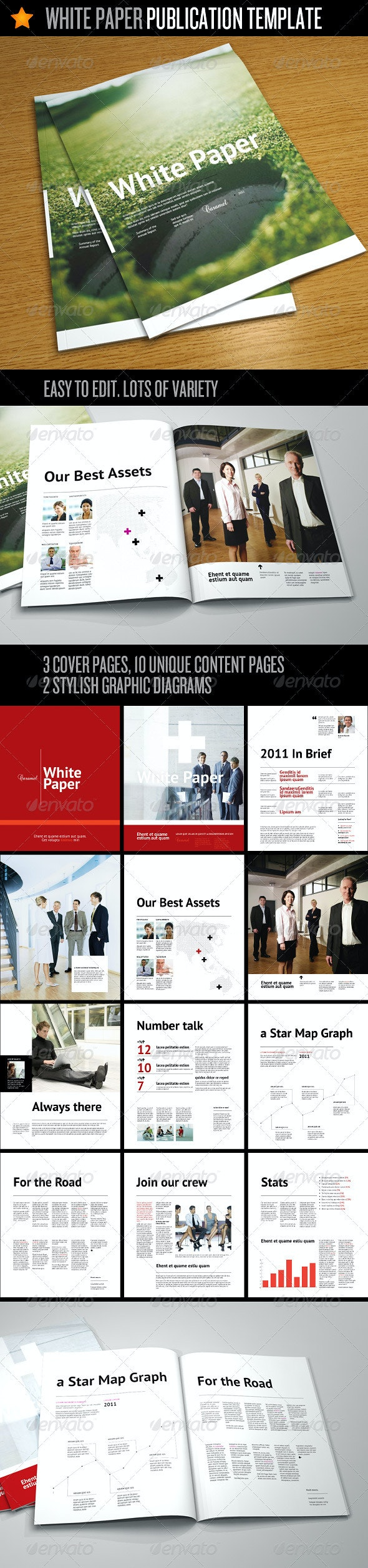 White Paper - Corporate Publication Template - Informational Brochures