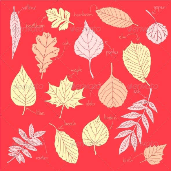 Color Sheets - Seasons Nature