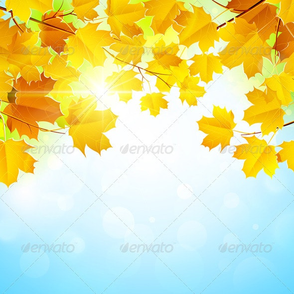 Autumn Leaves Background - Seasons Nature