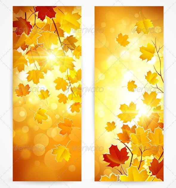 Autumn Banners - Seasons Nature