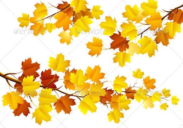 Autumn Banners - Seasons Nature
