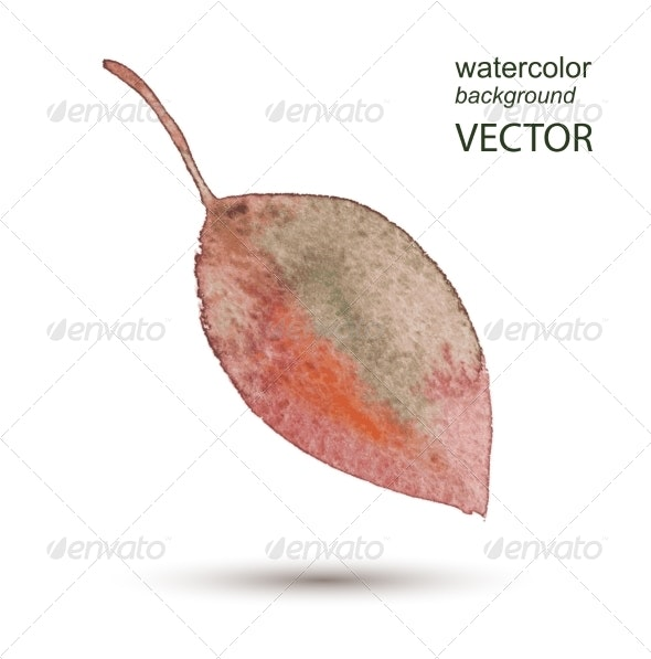 Abstract Leaf Watercolor Hand Painted Background - Flourishes / Swirls Decorative