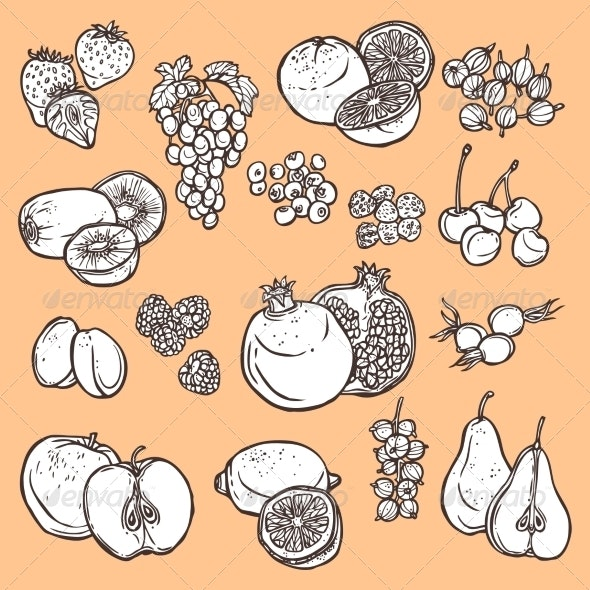 Fruits and Berries Sketch Icons - Food Objects