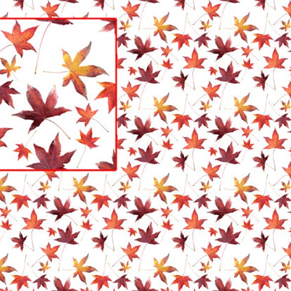 Dead Leaves Pattern