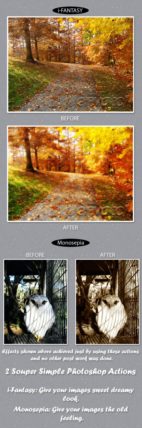 2 Souper Simple Actions - Photo Effects Actions