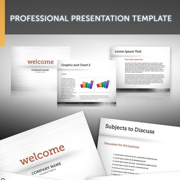 Professional Presentation Template 1