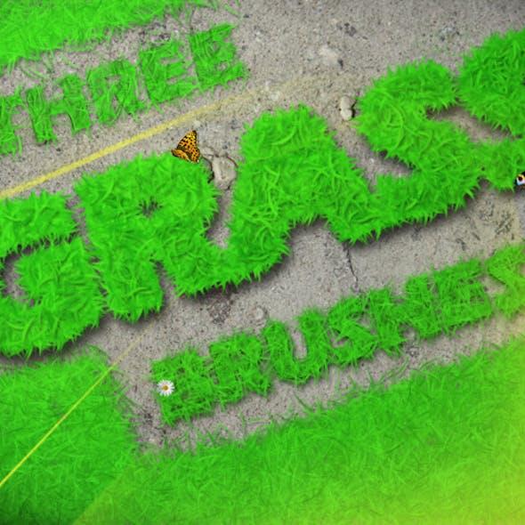 Three Grass Brushes