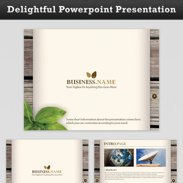 Delightful Business Presentation