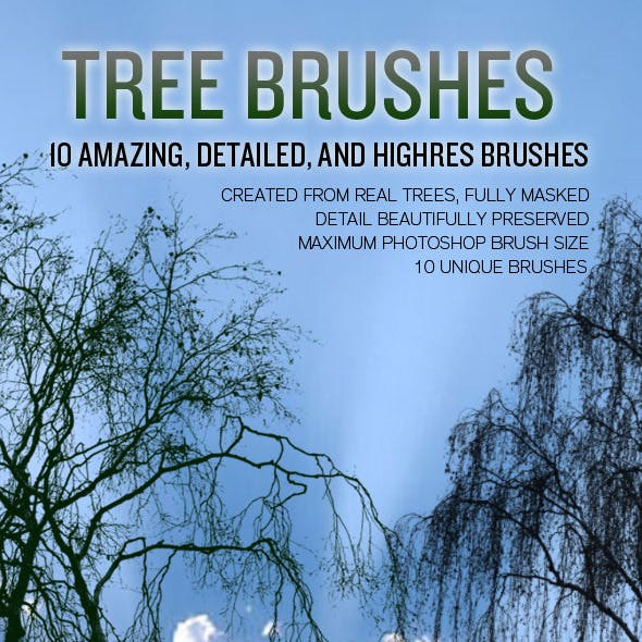 10 High Resolution Tree Brushes
