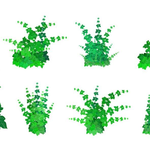 Set of Bushes