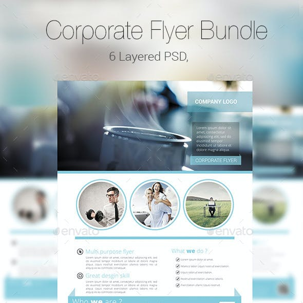 Corporate Flyer/Poster Bundle