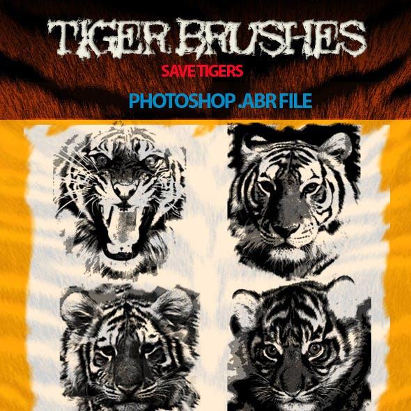 Tiger Brushes