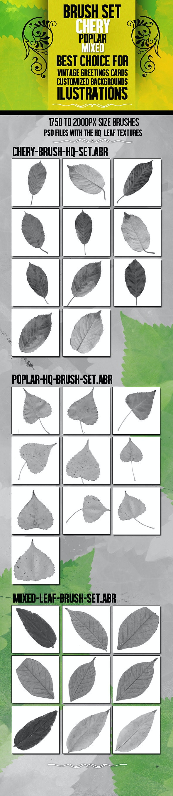 Leaf Brush Set With 3 HQ PSD resource - Texture Brushes