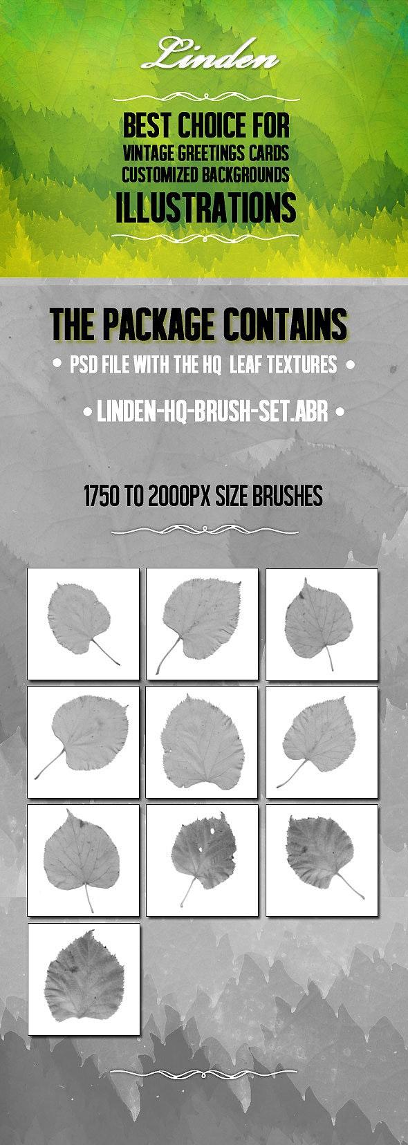 Linden High Quality Brush Set  - Flourishes Brushes