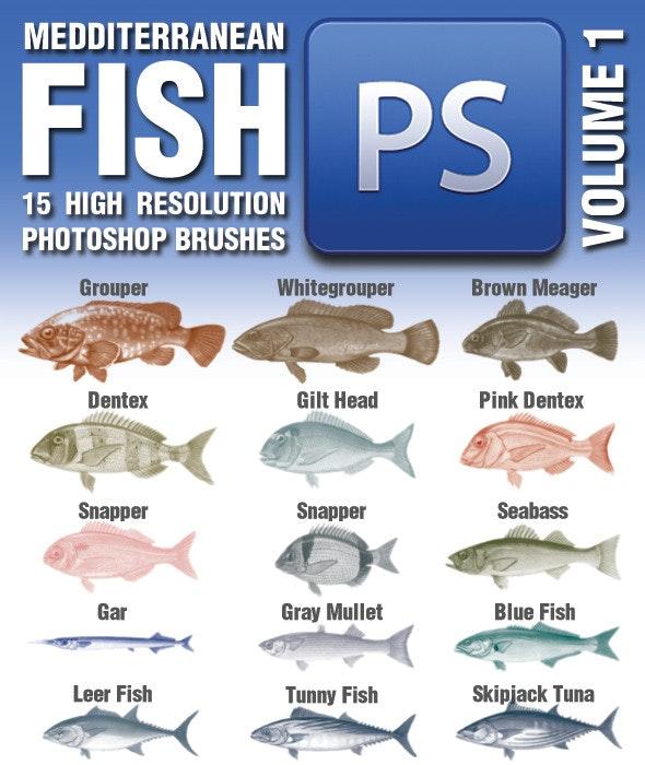 15 Mediterranean Fish Brushes Volume 1 - Brushes Photoshop