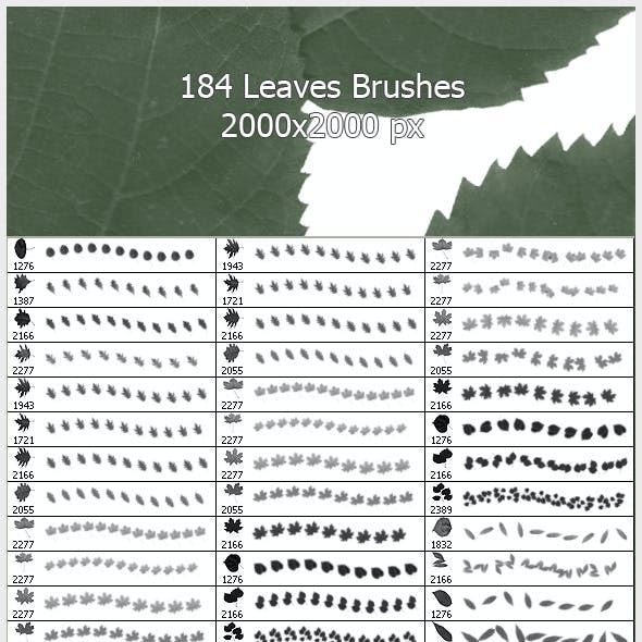 184 Leaves Brushes ( 2000px )