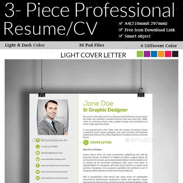 3- Piece Professional Resume/CV
