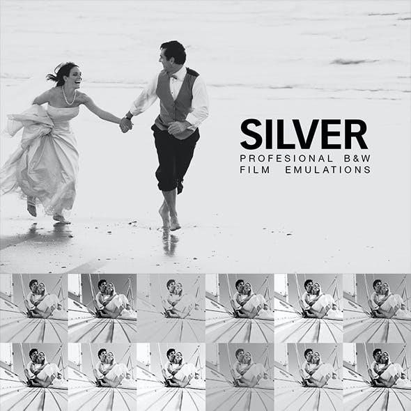 Silver - 28 B&W Film Emulations