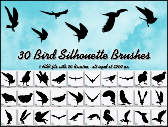 30 Bird Silhouette Brushes - Miscellaneous Brushes