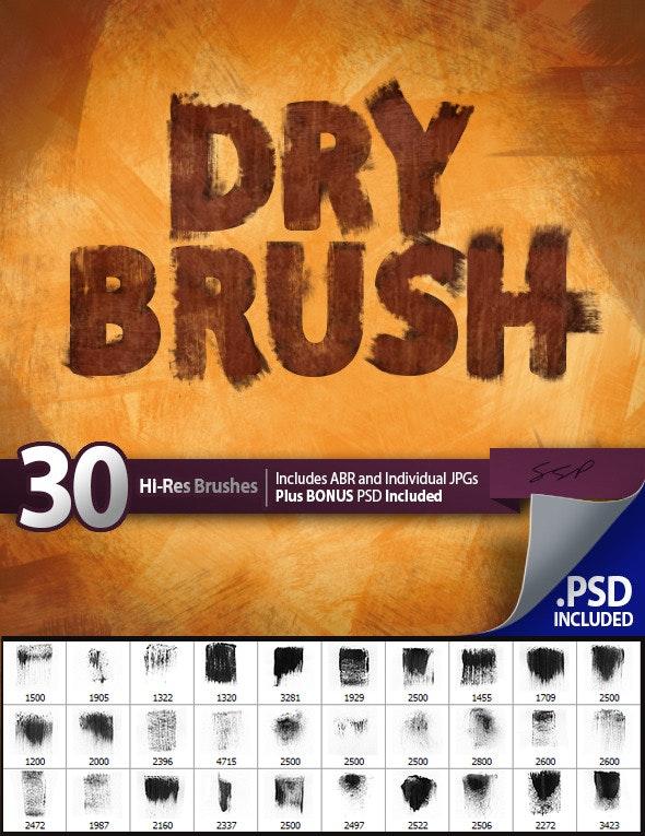 30 Dry Brushes Set - Grunge Brushes