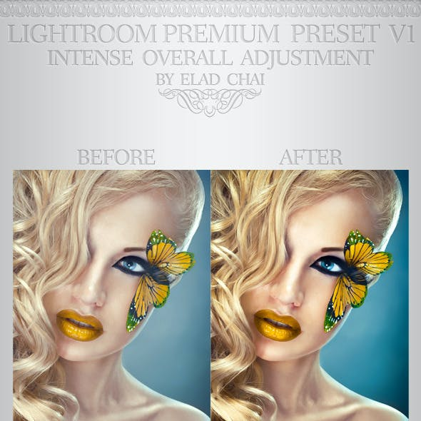 Perfect Model Lightroom Preset V1