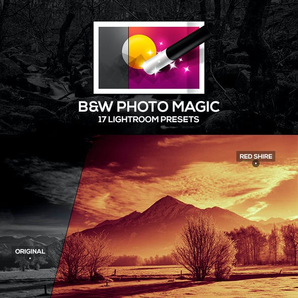 B&W Photo Magic Lightroom Presets